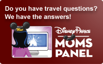 Moms Panel- Disney Parks